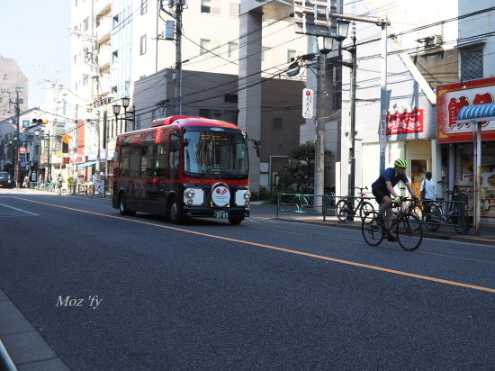 P5250335-12.jpg