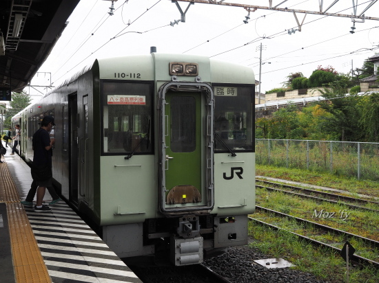 P9020015-12.jpg